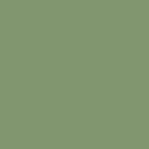 Moss Green 2158C