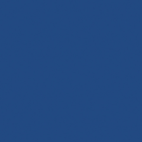 Midnight Blue 2161C