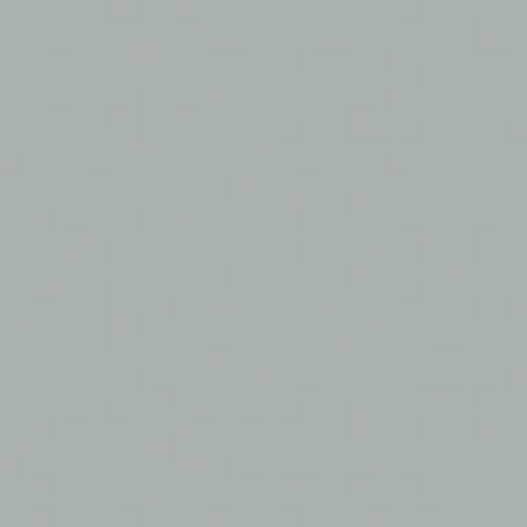 Aluminium (Metallic) 2168C