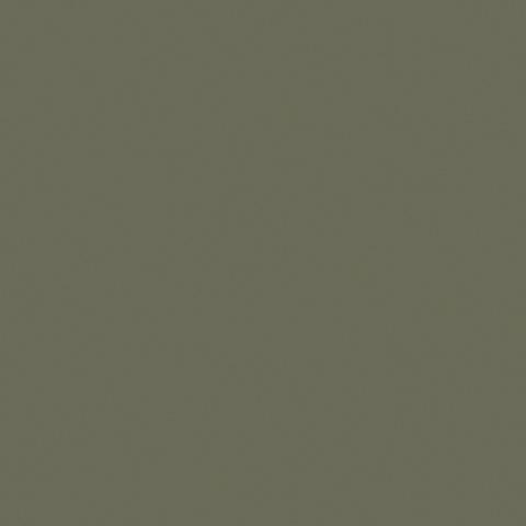 Olive 50668C