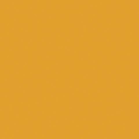 Dijon 50671C